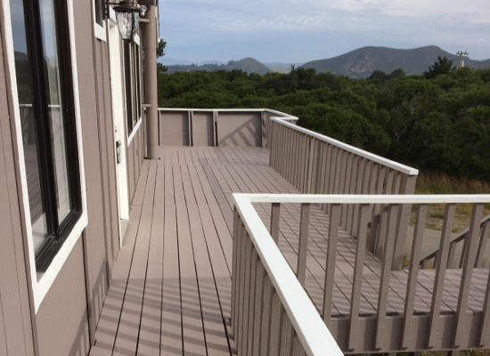 Fence Deck Painting